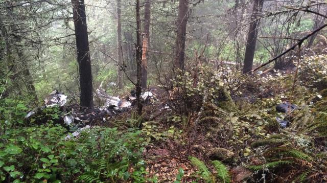 lee leslie piper cherokee wreckage 04242015 linn county_148400