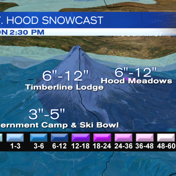 SnowCast_CASCADES_72hr_HOOD_ONLY_141365