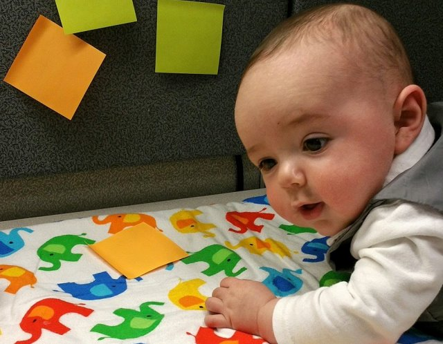 "Marissa VanHoozer's son, Gavin, at the Washington State Department of Health. Mom and son were part of a pilot ""Infants at Work"" policy, August 4, 2015. (Marissa VanHoozer)"