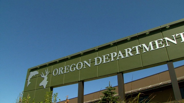 The office of the Oregon Department of Fish and Wildlife, July 2015 (KOIN)