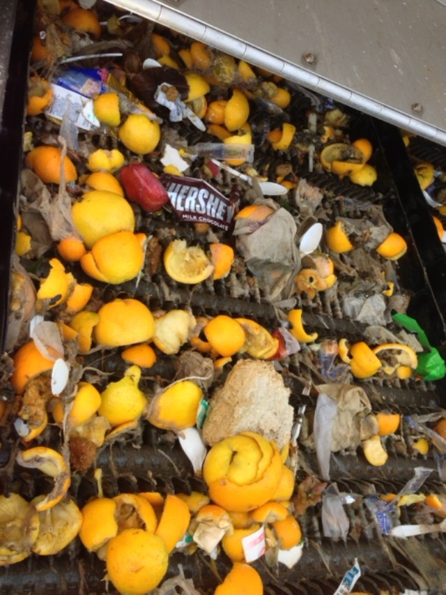Oranges, candy wrappers and other items removed from the sewer in Vancouver (Courtesy: City of Vancouver)