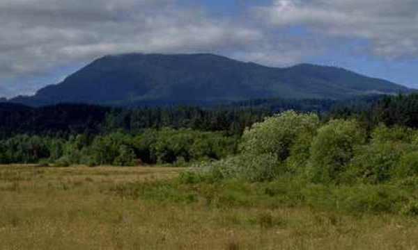 marys peak siuslaw national forest 09212015 web_206501
