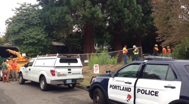 Protesters in the Eastmoreland neighborhood tried to block sequoias from being cut down, Sept. 14, 2015 (Courtesy: Jacob Gellman)