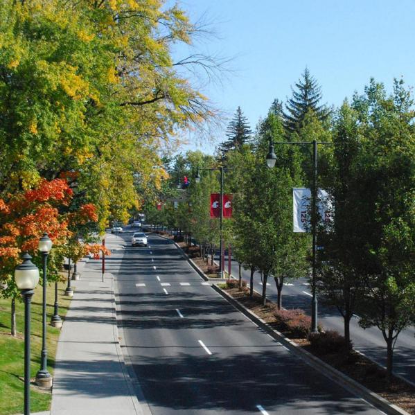 Washington State University Pullman 10232015_219955
