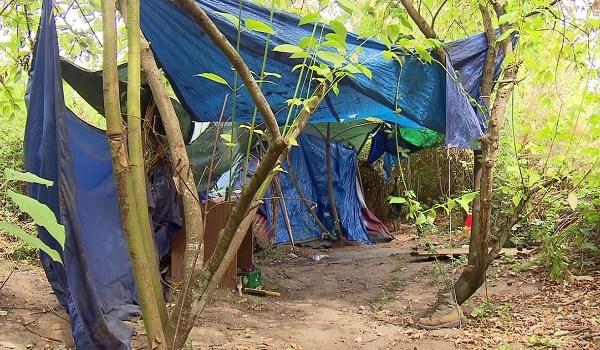 camp_343168