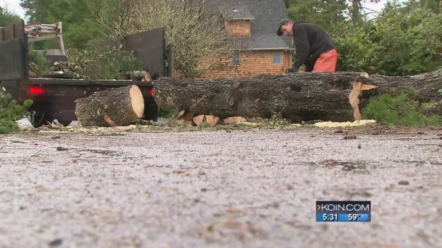 Manzanita cleaning up following powerful tornado