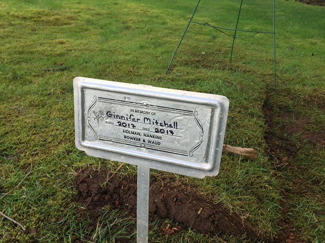 The grave of Ginnifer Mitchell, an infant who died shortly after her birth on March 5, 2017. Her parents are members of the Followers of Christ Church, who believe in faith healing, not doctors. (KOIN)