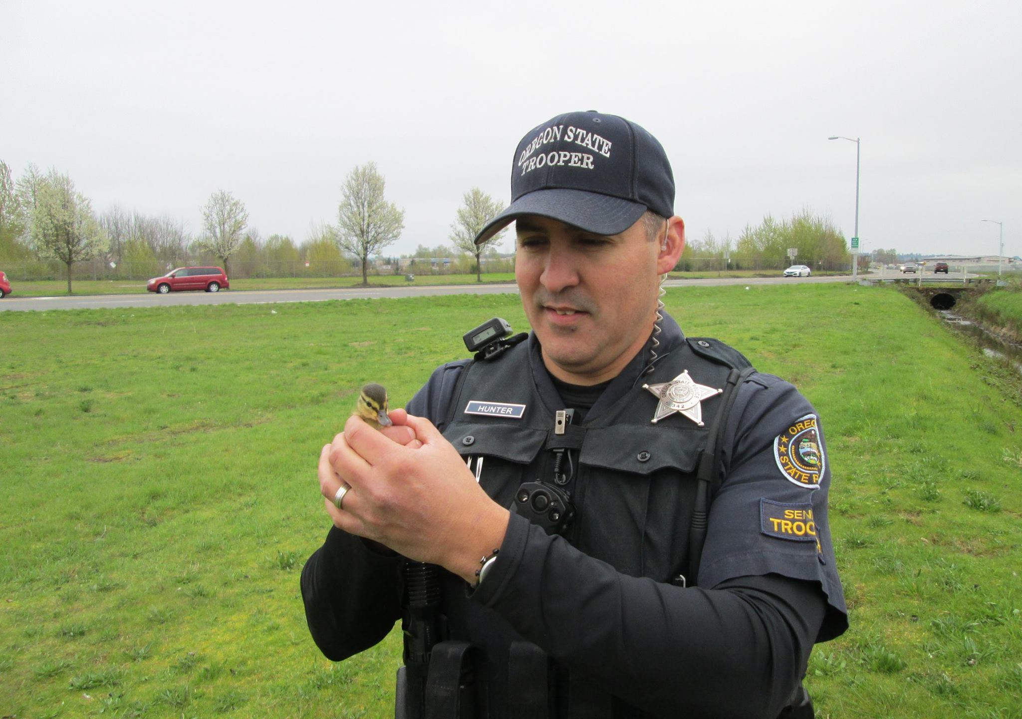 The Oregon State Police said Monday on its official Twitter and Facebook accounts that one of its troopers helped pluck two ducklings from a st_437637