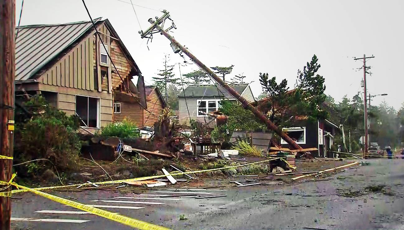 manzanita damage_442821