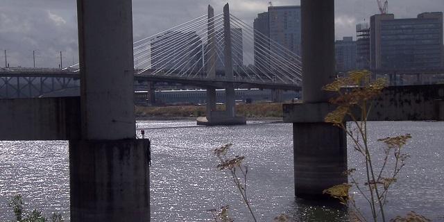 The Tilikum Crossing Bridge over the Willamette River, Septembere 19, 2017 (KOIN)