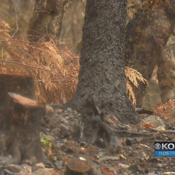 Community braces for Eagle Creek Fire aftermath