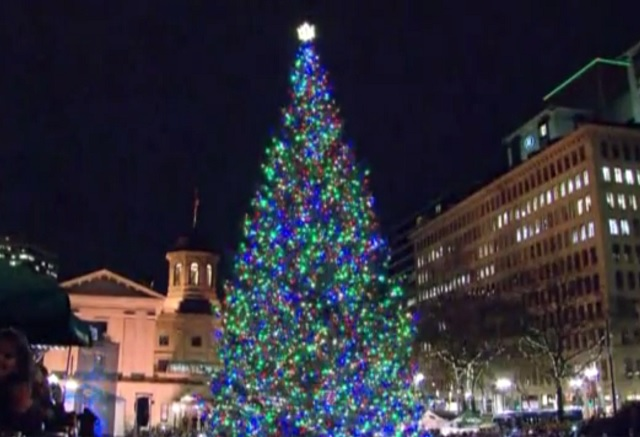 Portland Christmas Tree.Better Not Pout City Christmas Tree Is Comin To Town