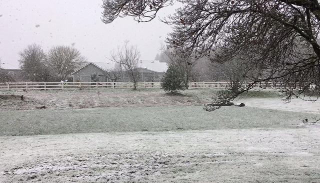snow clark county 2