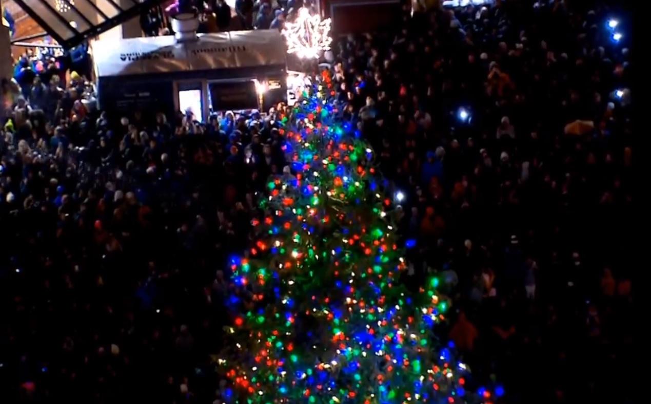 christmas tree_1543025897985.jpg.jpg