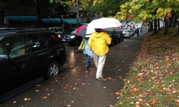 generic rain umbrellas 10202017_538138