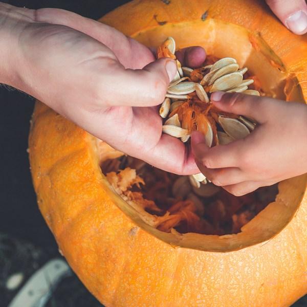 pumpkin%20seeds_1507924098167_308302_ver1_20171014051202-159532