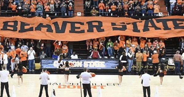 oregon state beavers women basketball a 03222019_1553285523992.jpg.jpg