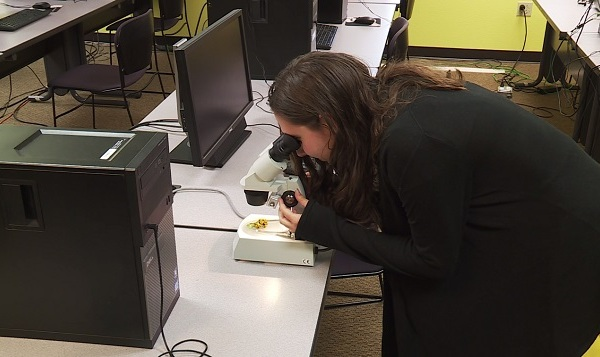 Madeleine Neiss microscope 05292019_1559197407626.jpg.jpg