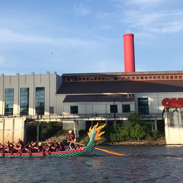 Pink Phoenix dragon boat_1559621708437.jpeg.jpg