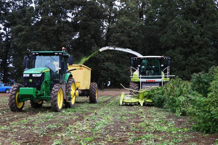 hemp farming 9292019