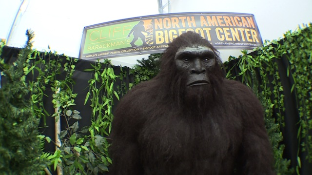 Finding Bigfoot in the Pacific Northwest