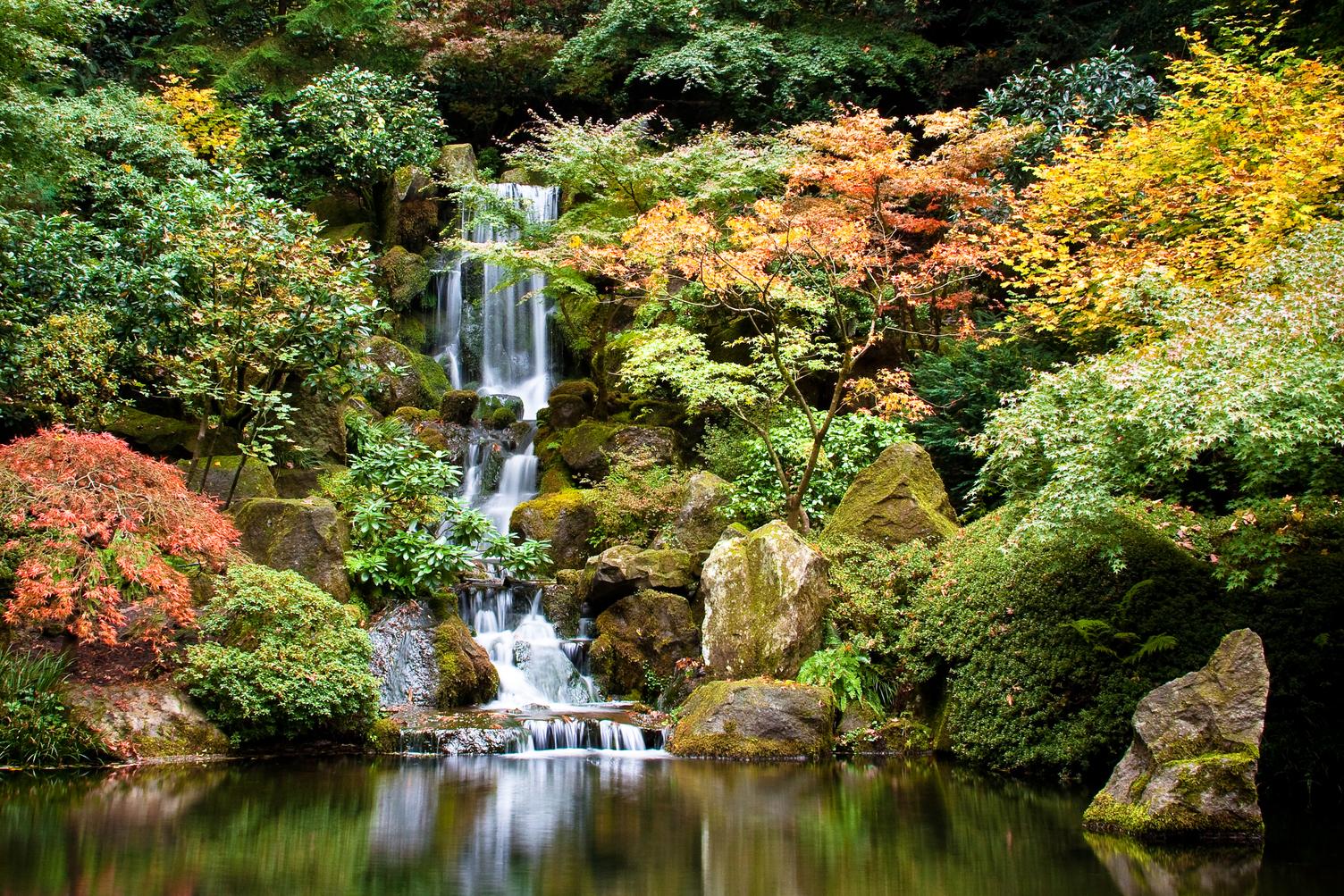 Portland S Japanese Garden Temporarily Closing Koin Com